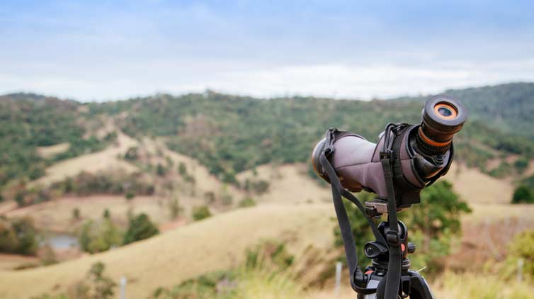 Finding the Best Monocular