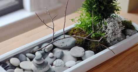 How to Create A Mini Zen Garden