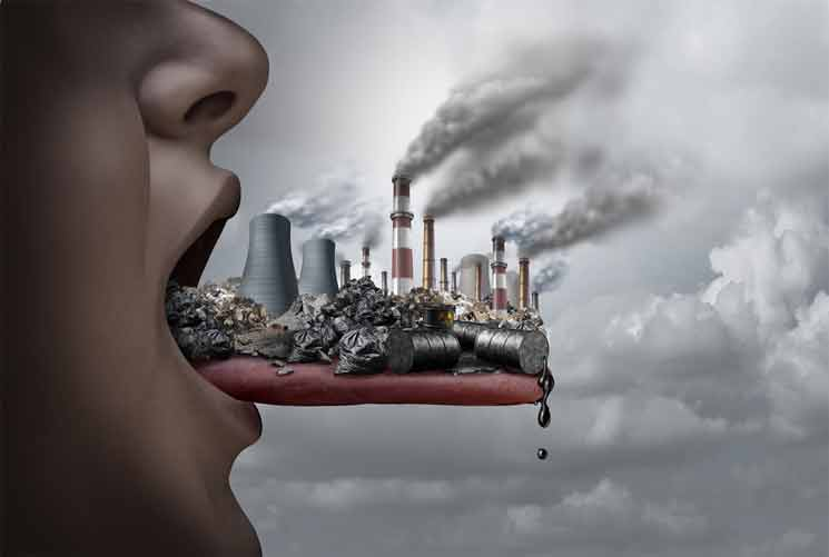 Toxins and Our Environment