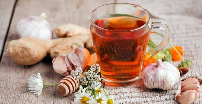 Ginger and Ginkgo Biloba-Redefining Chinese Herbal Medicine