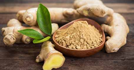 ginger and ginkgo biloba